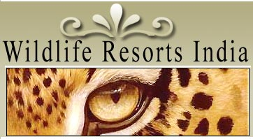 Wildlife Resorts India